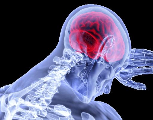 Krydsord er med til at holde hjernen i gang